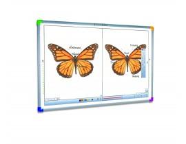 Интерактивная доска INTERWRITE DualBoard 1289/1289RF